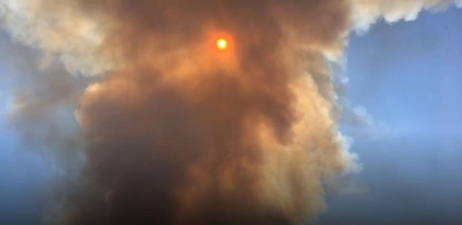 incendio-di-Castelfusano