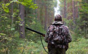 Stop caccia