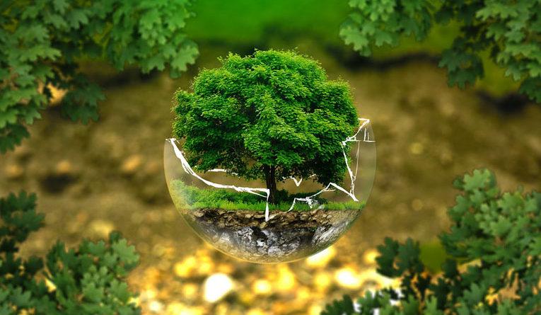 verdi ecologia