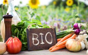 In Emilia Romagna l'agricoltura biologica si lascia alle spalle quella…